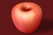 PS加深减淡工具画逼真的苹果