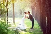 PS给偏暗的树林婚片增加光彩